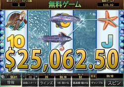Dolphin Reefで大勝利 25,062.50ドル獲得!